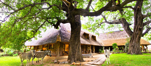 Blyde River Canyon Lodge, Drakensberg Mountains, game lodge, bed and breakfast, self catering, accommodation, bushveld, Blyde Hillside House, wildlife, hoedspruit, Blyde River Botanical Reserve, limpopo, hotel, health spa, massage parlour, farm accommodation