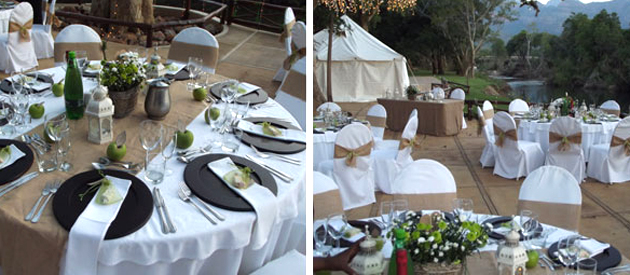 moholoholo ya mati, game reserve wedding venue, game lodge self catering accommodation hoedspruit, hoedspruit honeymoon accommodation, limpopo game lodge